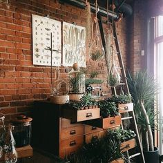 Plant goals #interiordesign #edison #tbt #light #lamp #industrial #handmade…