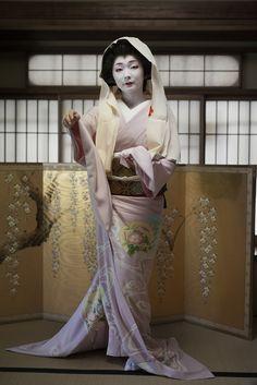 宮川町、芸妓 とし真菜さん CAMERA EOS5DMarkⅡ / LENS SIG... Japanese Geisha, Japanese Beauty, Japanese Kimono, Kyoto, Kabuki Costume, Japan Woman, Summer Kimono, Japanese History, Traditional Dresses