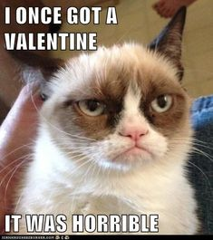 I once got a Valentine... it was horrible ~ Grumpy Cat