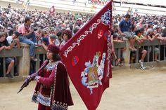 Corteo storico dell'Assunta 2008. Comparsa della Contrada della Torre: il Paggio Maggiore. Foto tratta dal sito http://palio.be/
