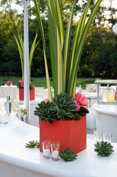 Succulents punctuate a vibrant red planter and the area that surrounds for a modern, yet fresh look.