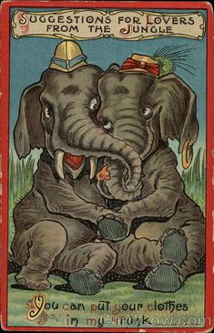 Suggestion for lovers from the jungle Elephants