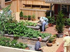 """Raised vegetable beds with """"stone"""" walls"""