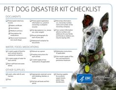 Every Member of the Family should be Prepared for Bad Weather! DOG Disaster Kit Checklist