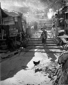 Hong Kong 1950's Memory Photography