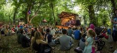 _Vantastival festival woodland stage... photo-K.Currans