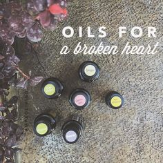 """HELICHRYSUM- The oil for pain. THYME – The oil of releasing and forgiving. CALMING BLEND- The oil of forgiveness. GERANIUM- The oil of love and trust. It should be called The Emotional Healer."""" GINGER- the oil of empowerment. MARJORAM- The oil of connection. Diffusing, inhaling, or applying over the heart are wonderful ways to use these powerful emotional healing oils."""