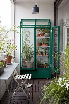 Balkon, Städtischer Ersatzgarten | kleines Gewächshaus #balcon #gardening #inspiration