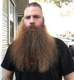 Amazing Beard Styles from Bearded Men Worldwide Beards And Mustaches, Grey Beards, Long Beards, Hipster Beards, Thick Beard, Sexy Beard, Beard No Mustache, Moustache, Long Beard Styles