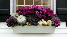 Add to the natural beauty of your yard with harvest-inspired fall decorations, like this fall flower box with purple chrysanthemums, that last from September through Thanksgiving.