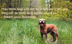 """You think dogs will not be in heaven? I tell you, they will be there long before any of us."" - Robert Louis Stevenson"