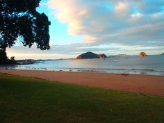 Paihia, New Zealand......that stretch of beach was my walk to work each day for a month and a half!
