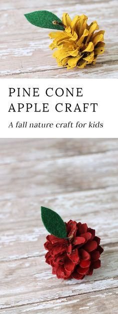 Kids of all ages will enjoy making rustic pine cone apples. They are a creative, colorful fall nature craft for kids! via @https://www.pinterest.com/fireflymudpie/