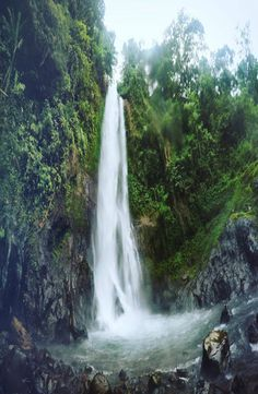 Aling Aling Waterfall is located near Singaraja in Bali Indonesia. There are 7 waterfalls in total ad it is one of the best waterfalls in Bali. Denpasar, Ubud, Fantasy World, Cheap Web Hosting, To Go, Around The Worlds, Waterfalls, 5 Hours, Outdoor