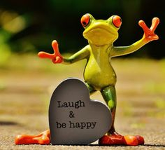 Free Image on Pixabay - Frog, Funny, Laugh, Cheerful, Happy Funny Frogs, Cute Frogs, Happy Wallpaper, Wallpaper Quotes, Sapo Meme, Student Jokes, Funny Instagram Captions, Frog Pictures, Photos Hd