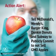 The USDA has approved the first genetically engineered apple, despite hundreds of thousands of petitions asking the agency to reject it. Can consumers convince fast-food restaurants not to sell GMO apples to our kids? TAKE ACTION! Tell McDonald's, Wendy's, Burger King, Dunkin Donuts and Subway to Publicly Commit to not Sell GMO Apples: http://orgcns.org/1EgJLDs #GMO