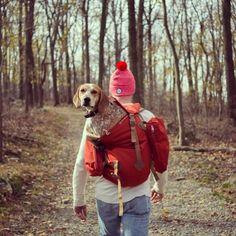 Theron Humphrey (fotógrafo) y su perra Maddie
