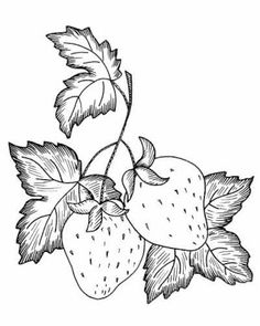 Awesome Most Popular Embroidery Patterns Ideas. Most Popular Embroidery Patterns Ideas. Hand Embroidery Patterns, Embroidery Stitches, Embroidery Designs, Fruit Painting, Fabric Painting, Colouring Pages, Coloring Books, Wood Burning Patterns, Fruit Pattern