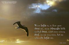 Dag 36 Bybelvers: 1 Johannes 4:18 Waar liefde is, is daar geen vrees nie, maar volmaakte liefde verdryf vrees, want vrees verwag straf, en wie nog vrees, het nie volmaakte liefde nie