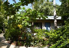 Harmony Hotel bungalow, Nosara, Costa Rica