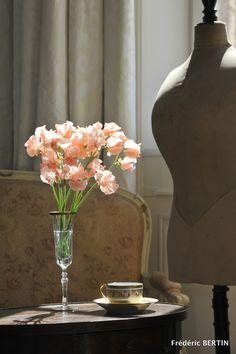Pois de senteur dans coupe à champagne Cristallerie de Champagne et tasse Haviland, photo de JL SCOTTO