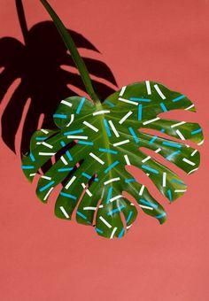 In tempi di pattern mania, anche le foglie si vestono delle più gettonate stampe di tendenza e a farlo non è uno stilista ma l'artista multidisciplinare Sarah Illenberger.