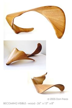 """Becoming Visible"" Abstract Wood Sculpture"