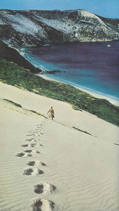 San Miguel Island, California, 1958, National Geographic