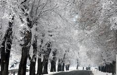 The South Island of New Zealand is having its first wintry blast of snow for the year ...