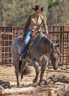 Consider adding a new class to your show schedule with these tips from Horse & Rider Magazine.