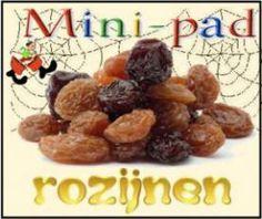 Mini-pad Rozijnen :: mini-pad-rozijnen.yurls.net