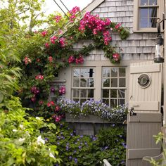 Sometimes a garden can become a part of the house itself, these beautiful flowers love this Cape Cod home so much! #Garden #Springtime #Flowers