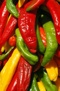 Red yellow green Chile peppers, Pueblo, Colorado, food photography, primary colors, bunch, chili