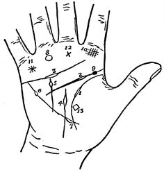 Early Ancient History of Palmistry  By Amber  http://www.online-tarot-readings-by-amber.info  The early ancient history of palmistry shows information on the laws and practice of hand reading in Vedic scripts, the bible and early Semitic writings.  In his book Naturalis Historia, the Roman scholar Pliny 23-97 AD mentioned the idea that broken lines in the palm indicate a short life.  Read More: http://tarotamber75.wordpress.com/2012/12/08/early-ancient-history-of-palmistry/