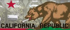 In 1996, California voters passed Proposition 215, which made California the first state in the United States to allow for the medical use of marijuana. The California Department of Health (CDPH) administers the Medical Marijuana
