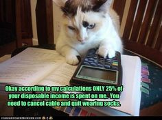"""""""According to my calculations only 25% of your disposable income is spent on me. You need to cancel cable and quit wearing socks.""""     pinned by www.affordablecomp.net"""