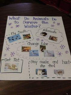 New Winter Art Projects For Kids Kindergarten Polar Bears Ideas Thanksgiving Activities, Winter Activities, Preschool Winter, Kindergarten Winter Animals, Thanksgiving Crafts, Artic Animals, Hibernating Animals, Nocturnal Animals, Animals That Hibernate