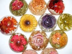 Paperweights & Embedments Gallery Forever In TimeForever In Time Paperweights & Embedments Gallery Forever In TimeForever In Time. Flower Crafts, Diy Flowers, Paper Flowers, Christmas Party Decorations Diy, Diy Wedding Decorations, Perserving Flowers, Diy Wedding Buffet, Wedding Cake, Wedding Ideas