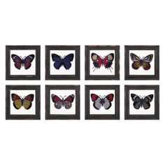 Imax Butterfly Framed Glass Wall Decor - Set of 8, Brown