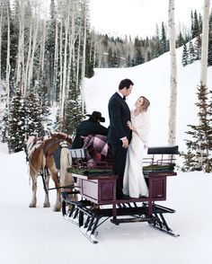 Winter wedding with horses and sleigh.