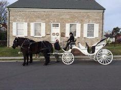 Shenandoah Carriage Company. Wedding in Winchester, Va.