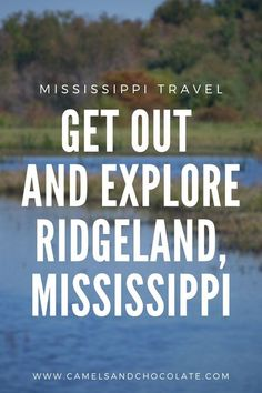 Ridgeland in central Mississippi is a town that is under the radar, full of green spaces, home to a scenic reservoir lake and a wildlife preserve, as well as also having great dining and shopping options. All this makes it the perfect destination for a long weekend trip. Find out more about Ridgeland, Mississippi including where to go, what to eat, and where to stay. | Camels & Chocolate #mississippi #ridgeland #travel