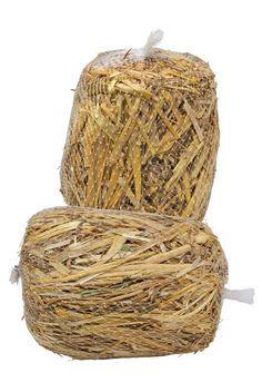 Barley Straw Bales - Natural Pond Cleaner | Gardeners.com
