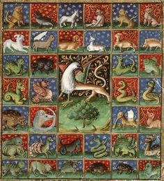 'Livre des propriétés des choses' (French translation of Jean Corbechon), Paris Medieval Books, Animal Art, Medieval, Bestiary, Illustrated Manuscript, Beast, Art, Medieval Paintings, Medieval Life
