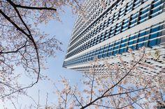 Shinagawa Season Terrace (品川シーズンテラス). /  Architect : NTT Facilities…