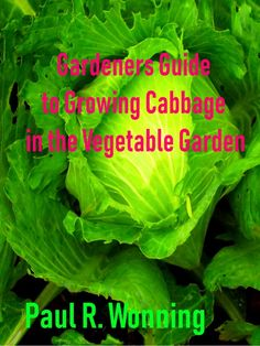 Gardeners Guide to Growing Cabbage in the Vegetable Garden Canning Cabbage, Growing Cabbage, Garden Guide, Growing Vegetables, Vegetable Garden, Harvest, Pickling, Plants, Gardening