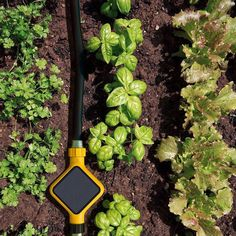 Help make your garden smarter. Let it tell you when it needs to be watered. The Edyn Garden Sensor is just one of the many accessories for your hose that will help make watering more efficient and low-maintenance.