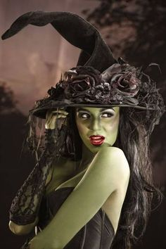 DIY Wizard of Oz Wicked Witch of the West Halloween Costume Idea 3