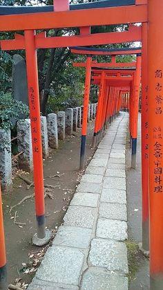 Nezu Jinjya (Shrine)
