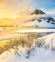 Greeted by golden light on a chilly morning at Bow Lake